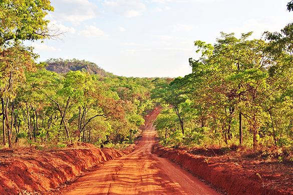 Mozambique Contribution