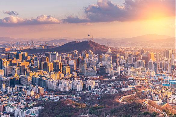 Korea Contribution